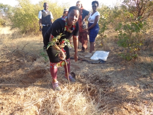 Bettie Luwuge Planting a tree in Victoria Falls