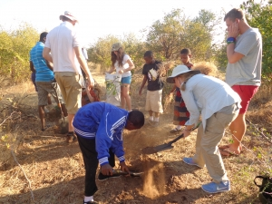 Tree planting in the Vic Falls
